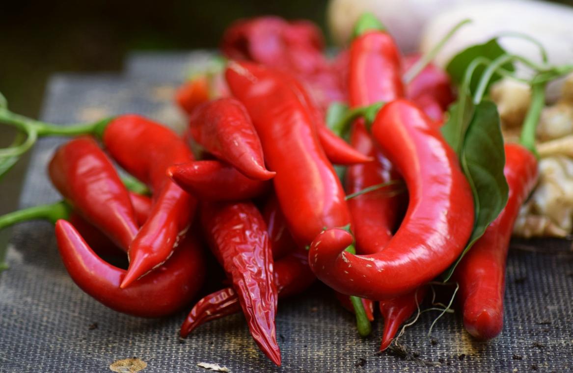 červené papričky